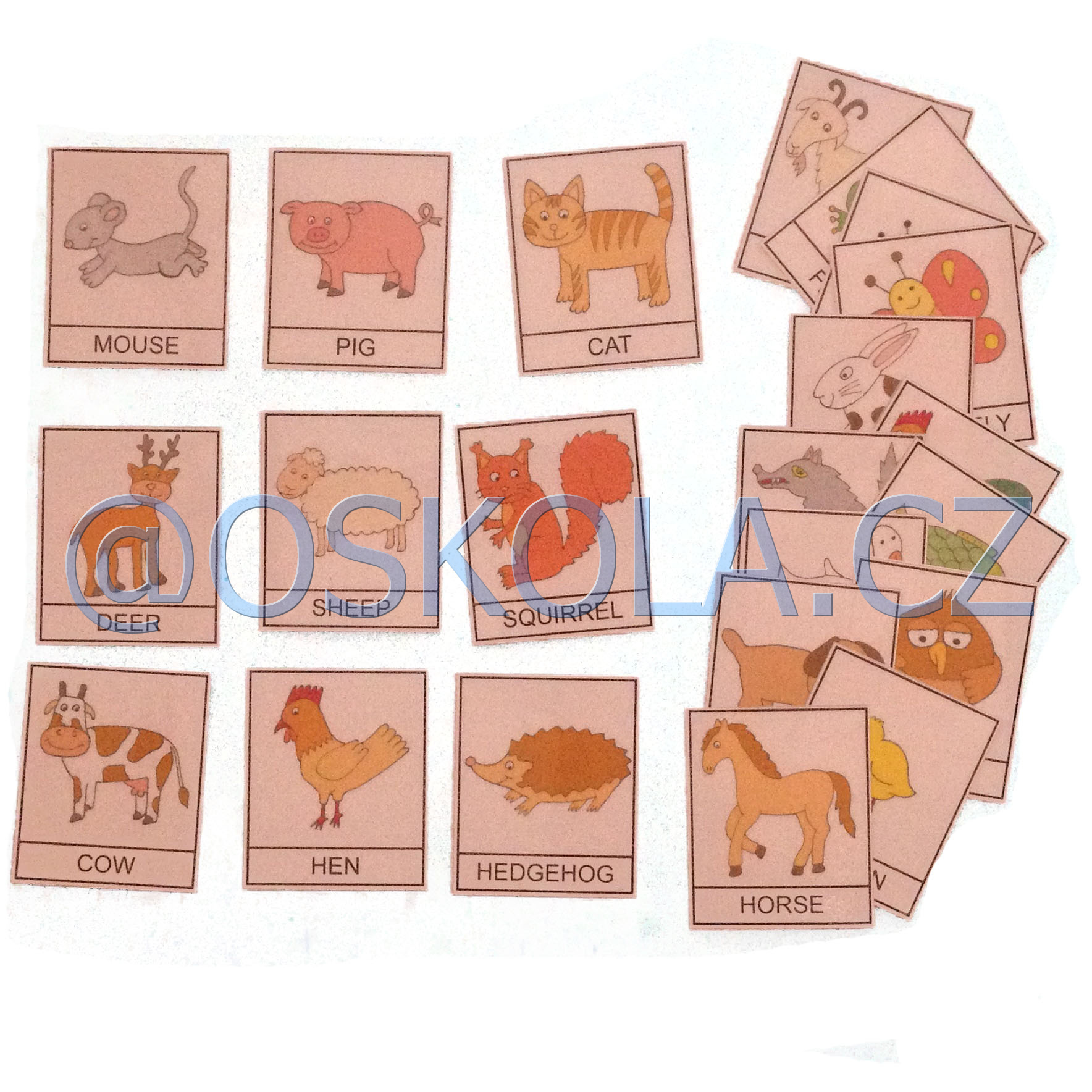 Animals 1 - English cards